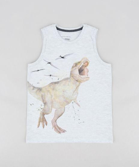 Regata-Infantil-Dinossauros-Gola-Careca-Cinza-Mescla-Claro-9260450-Cinza_Mescla_Claro_1